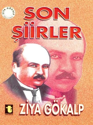 cover image of Son Şiirler