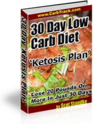 cover image of 30 Day Low Carb Diet 'Ketosis Plan'