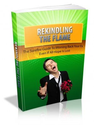 cover image of Rekindling the Flame