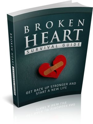 cover image of Broken Heart Survival Guide