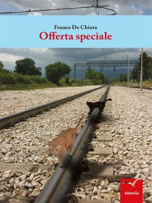 cover image of Offerta speciale