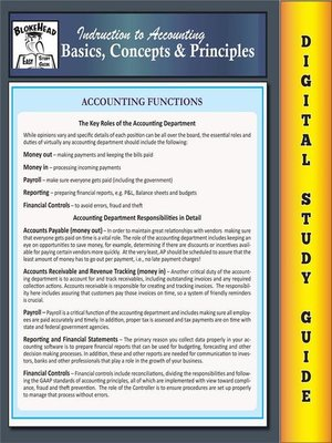 cover image of Accounting Basics, Concepts & Principles (Blokehead Easy Study Guide)