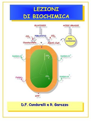 cover image of Lezioni di Biochimica
