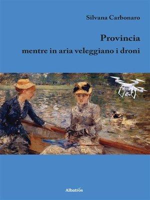 cover image of Provincia