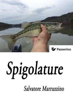 cover image of Spigolature