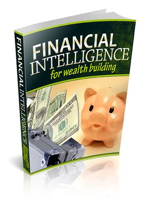 cover image of Financial Intelligence For Wealth Building