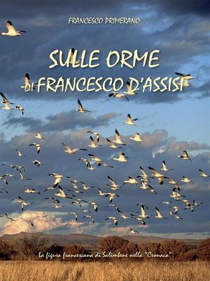 cover image of Sulle orme di Francesco d'Assisi