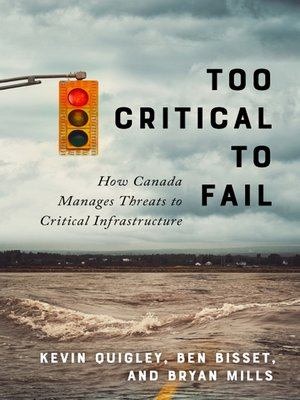 cover image of Too Critical to Fail