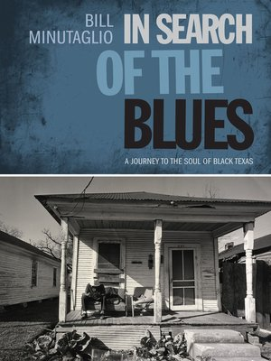 cover image of In Search of the Blues