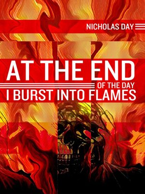 cover image of At the End of the Day I Burst into Flames