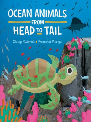 cover image of Ocean Animals from Head to Tail