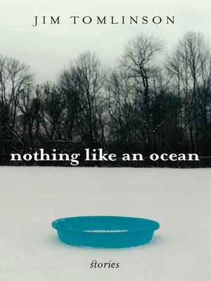 cover image of Nothing Like an Ocean