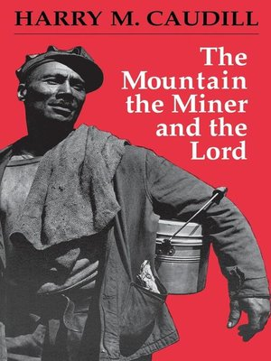 cover image of The Mountain, the Miner, and the Lord and Other Tales from a Country Law Office