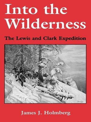 cover image of Into the Wilderness