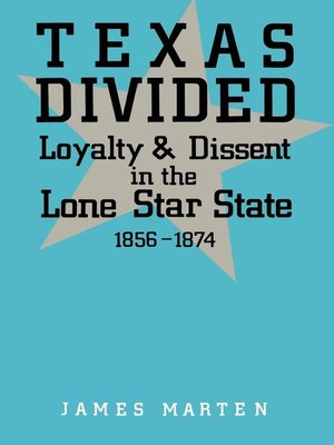 cover image of Texas Divided