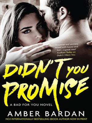 cover image of Didn't You Promise