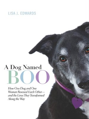cover image of A Dog Named Boo