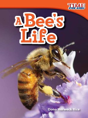 cover image of A Bee's Life