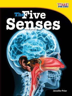cover image of The Five Senses