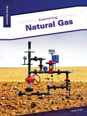 cover image of Examining Natural Gas