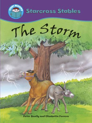 cover image of The Storm