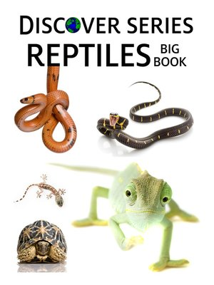 cover image of Reptiles Big Book