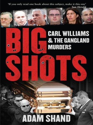 cover image of Big Shots