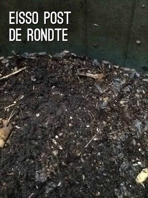 cover image of De rondte