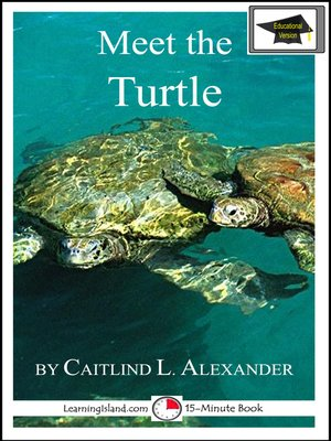 cover image of Meet the Turtle