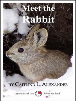 cover image of Meet the Rabbit
