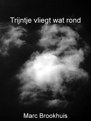 cover image of Trijntje vliegt wat rond