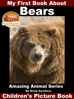 cover image of My First Book About Bears