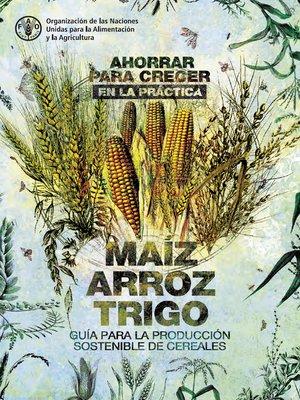 cover image of Ahorrar para crecer en la práctica