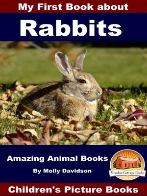 cover image of My First Book about Rabbits