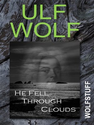 cover image of He Fell Through Clouds
