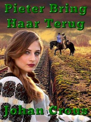 cover image of Pieter Bring Haar Terug