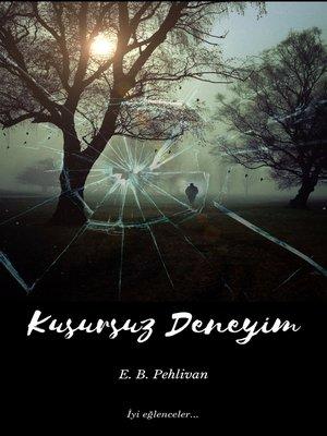 cover image of Kusursuz Deneyim