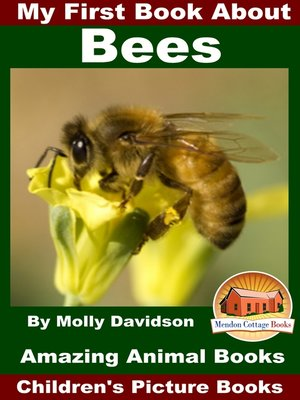 cover image of My First Book About Bees