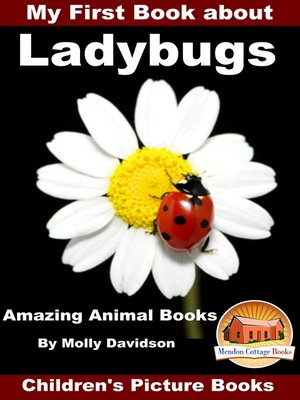 cover image of My First Book about Ladybugs