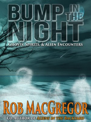 cover image of Bump in the Night