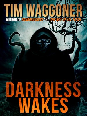 cover image of Darkness Wakes