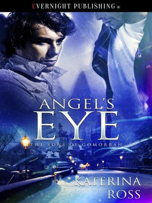 cover image of Angel's Eye