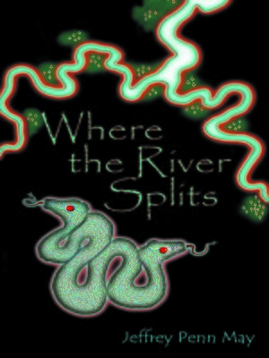 cover image of Where the River Splits