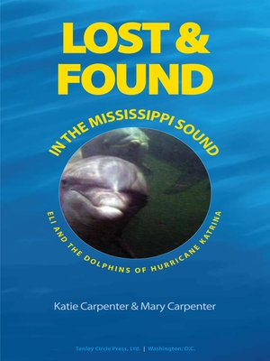 cover image of Lost & Found in the Mississippi Sound