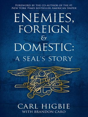 cover image of Enemies, Foreign and Domestic
