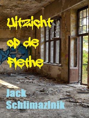cover image of Uitzicht op de Flethe