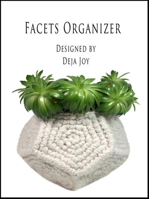 cover image of Facets Organizer