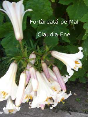 cover image of Fortareata pe Mal