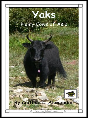 cover image of Yaks