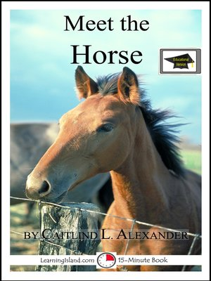 cover image of Meet the Horse